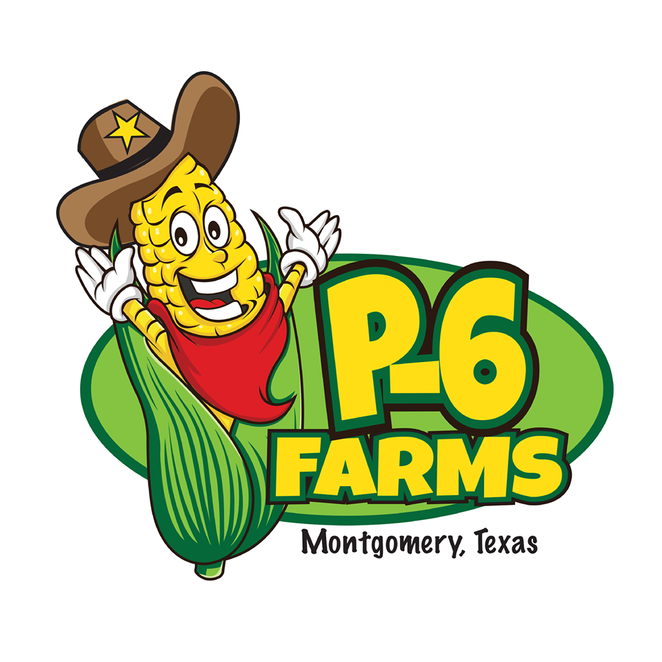 Fall Days Corn Maze At P 6 Farms Kids Out And About Houston