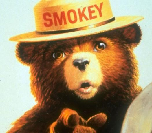 Image result for smokey bear jpg
