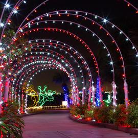 Wonderful A Mile Long Trail With More Than One Million Lights And Lighted Scenes Take  You Around The Moody Gardens Property With ...