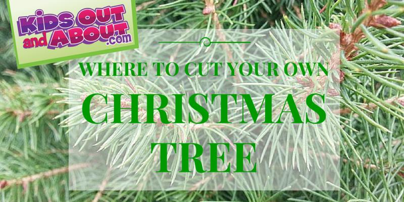 Christmas Tree Farms In & Around Houston, TX